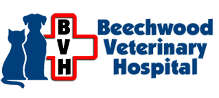 Beechwood Veterinary Hospital